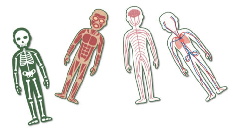 Zdraví a nemoc