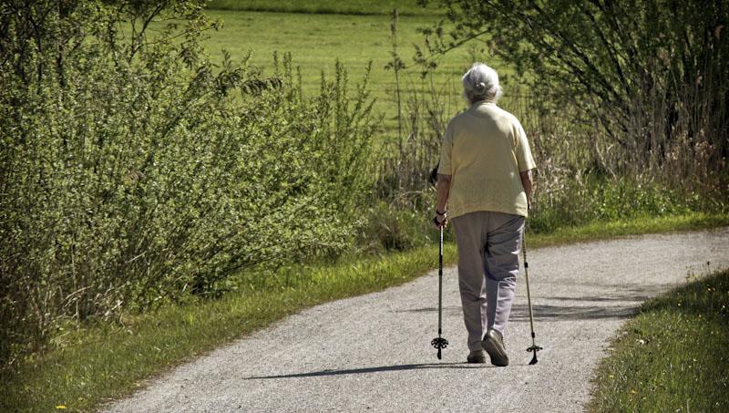 Zdraví, pohyb, severská chůze