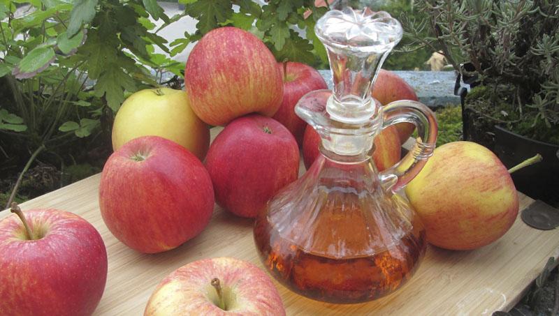 ocet jablka