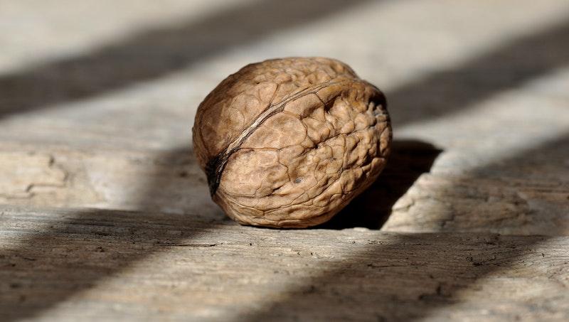 Ořech